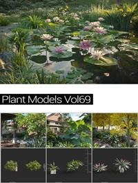 MAXTREE Plant Models Vol 69